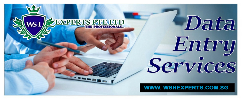Superior data-entry services, Data management services,